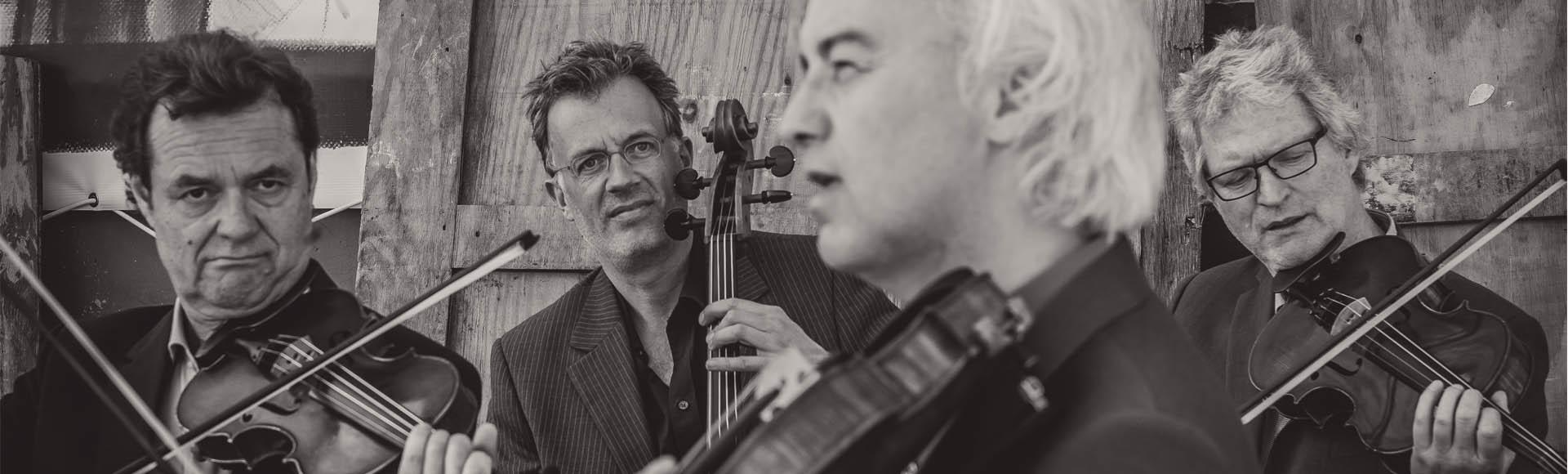 Modern String Quartet